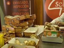Clasificación de producto por parte de inspectores de la marca 'Setas de Castilla y León'