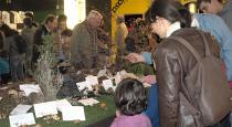 El público en la exposición micológica