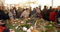 El numeroso público de Mercasetas se interesa por la exposición micológica